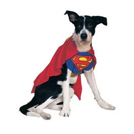 Costume Superman chien